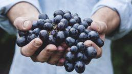 New Wine Church Wieso noch eine Gemeinde?